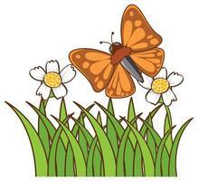 vlinder in tuin op witte achtergrond vector