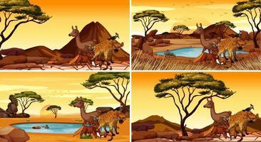 vier verschillende scènes met wilde dieren vector