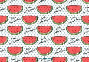 Hand Getrokken Watermeloen Patroon vector