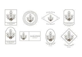 Juniper Outline Logo Gratis Vector