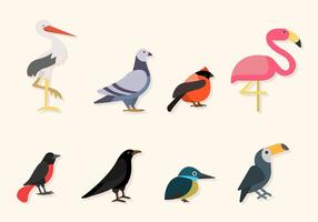Platte Vogelvectoren vector