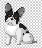 Franse bulldog in zittende positie stripfiguur geïsoleerd op transparante achtergrond