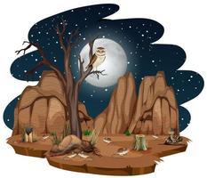 wilde woestijn met woestijndier 's nachts op witte achtergrond