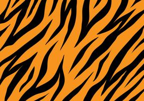 Tijger Textuur Achtergrond vector