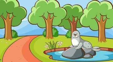 scène met zeehond in het park