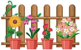 mooie bloemen in potten op witte achtergrond vector