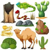 set van schattige woestijndier en natuur vector