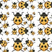 lieveheersbeestje op naadloze achtergrond vector