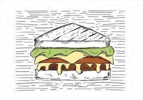 Vrije Hand Getekende Vector Sandwich Illustratie