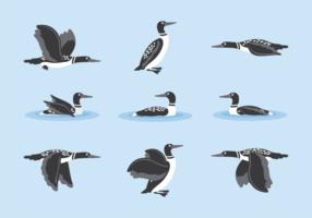 Loon cartoon vector