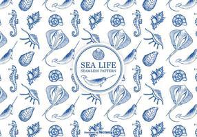 Hand getekend geëtst zee leven naadloos patroon vector