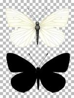 vlinder en zijn silhouet op transparante achtergrond vector