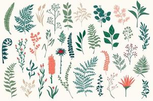 Wildflower decoratieve elementen instellen vector