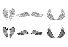 Realistische Angel Wings vector