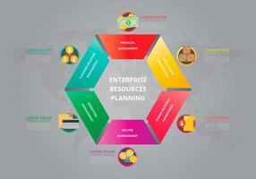 Levenscyclus diagram sjabloon. Enterprise resources planning. vector