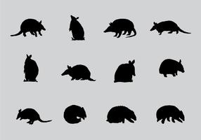 Armadillo Sillhaouttes vector