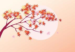 Gladde Japanse esdoornplant met zonachtergrond en daling van esdoornbladeren vector