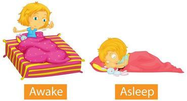 tegenovergestelde woorden met wakker en in slaap vector