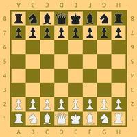 schaakbord met stukken