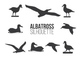 Albatros sillhaouttes vector