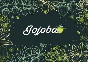 Jojoba Handdrawn Achtergrond vector