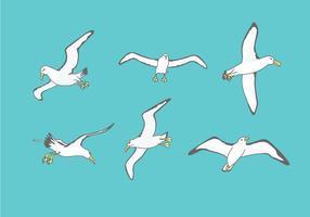 Albatros Illustratie Vector