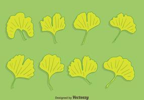Ginkgo Leaf Collectie Vector