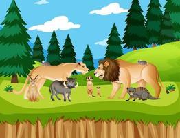 groep wilde Afrikaanse dieren in de bosscène