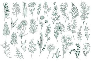Wildflower decoratieve omtrek elementen instellen