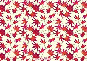 Herfst Japanse Esdoorn Bladeren Achtergrond vector