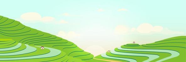 terrasvormige velden bij zonsopgang