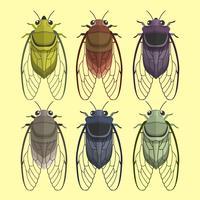 Cicada Insect Vector Collectie