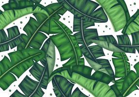 Botanische Banaan Bladeren Naadloos Patroon