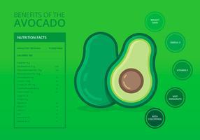 Voedingsfeiten van Avocado Infographic Templates vector