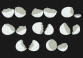Set van gebroken ei Vector