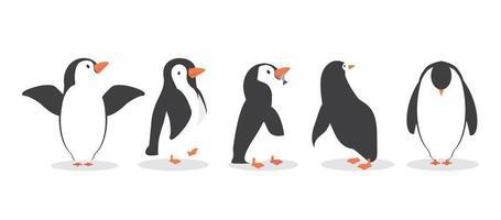 pinguïn karakters in verschillende poses set