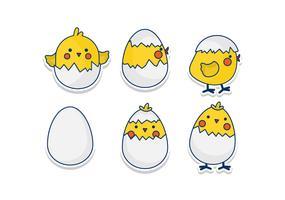 Chicken Cracking Eggs Vectors
