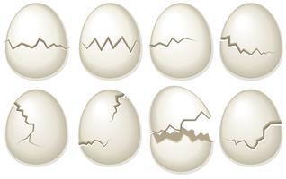 Vector set van gebroken ei-shells