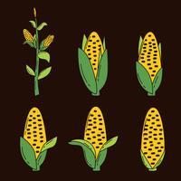 Maïs Collectie Vector