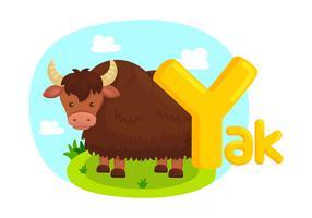 Alfabet Y met afbeelding van Yak vector