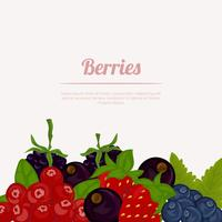 Set van bessen fruit vector