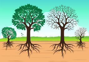 Vector boom met wortels geïsoleerd op wit