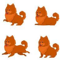spitz hond in verschillende poses vector