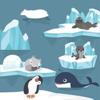 schattige arctische dieren die rondhangen op ijsschotsen vector