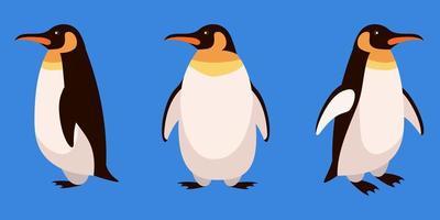 pinguïn in verschillende hoeken vector