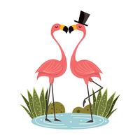 Flamingo's in de liefde vector
