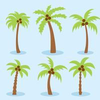 Palmboom op blauwe vector