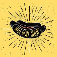 Hand getrokken Vector hotdog illustratie
