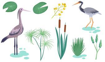 moeras wetland vectoren