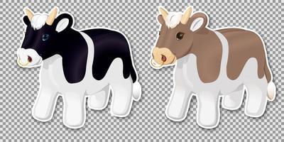 zwart-wit en rode stieren vector
